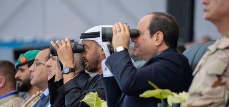 د. سالي شعراوي تكتب: أفاق التعاون المصري الإماراتي