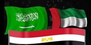 مصر والإمارات والسعودية يستحوذون على 65 % من الاستثمار الأجنبي بالمنطقة العربية